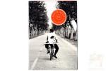Набор из 50 открыток: Фотографии Элиотта Эрвита