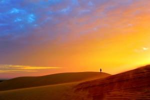 Открытка: В пустыне