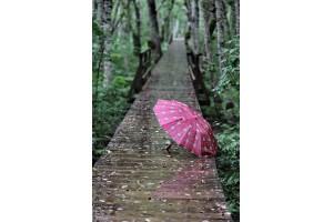 Открытка: Зонтик на мостике