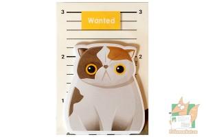 Наборы листков для записок: Разыскивается кот