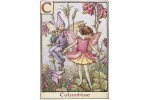 Почтовая открытка Columbine Fairy