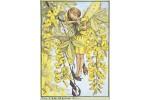 Открытка: Laburnum Fairy