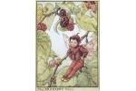 Открытка: Mulberry Fairy