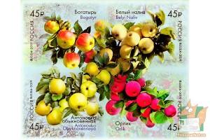 Почтовые марки самоклеющиеся: Сорта яблони