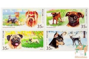 Почтовые марки: Декоративные породы собак
