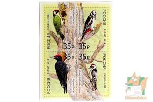Почтовые марки: Фауна России. Дятлы.
