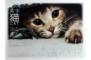 Набор из 32 открыток - Забавные кошки