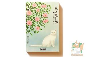 Набор из 30 открыток: Кошки в цветах