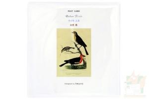 Набор открыток с птицами: Nature Birds