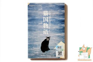 Набор из 30 открыток: Кошки ассорти