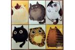 Набор из 6 открыток: Круглые коты