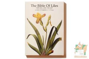 Набор из 32 фигурных открыток: Библия лилий