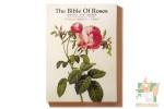 Набор из 32 фигурных открыток: Библия роз