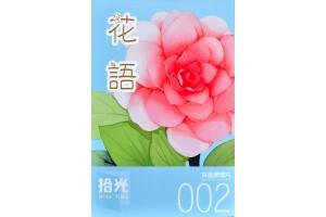 Набор из 30 открыток: MISS TIME 002 - Цветы
