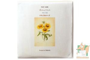 Набор из 16 открыток: Цветы