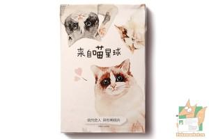 Набор из 30 фигурных карточек: Милые котики