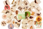 Набор из 40 наклеек: Рыжая кошка