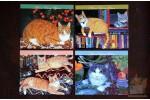 4 карточки: Коты