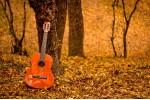 Открытка: Гитара в лесу