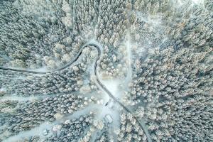 Открытка: Дорога в заснеженном лесу