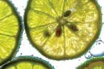 Открытка: Лимончики