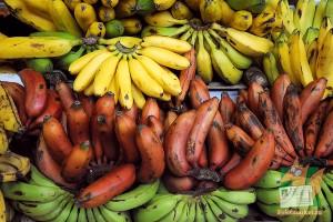 Открытка: Банановый рай