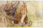 Почтовая открытка: The World of Peter Rabbit - 43