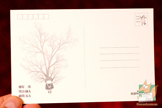 Набор открыток Animal