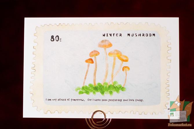 Набор открыток грибы в марках