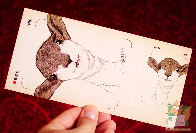 Набор длинных открыток с отрывным корешком