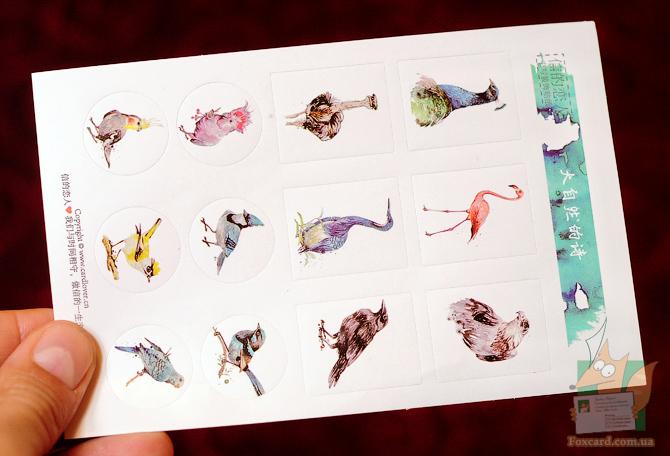 Набор открыток для посткроссинга с птицами
