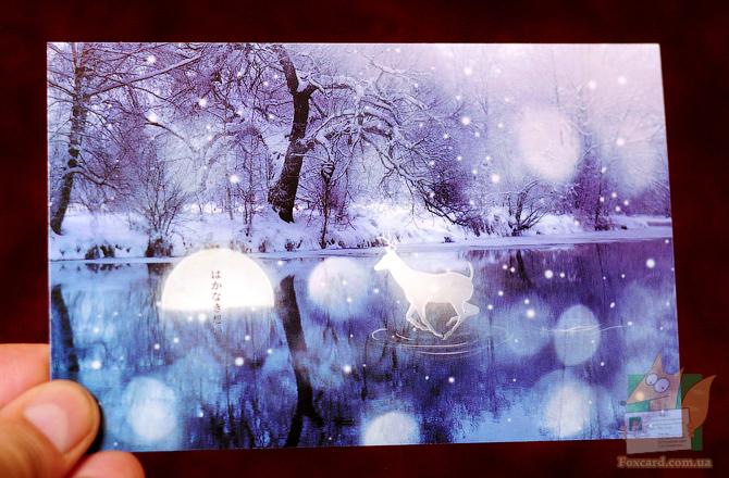 Набор почтовых открыток Волшебный лес